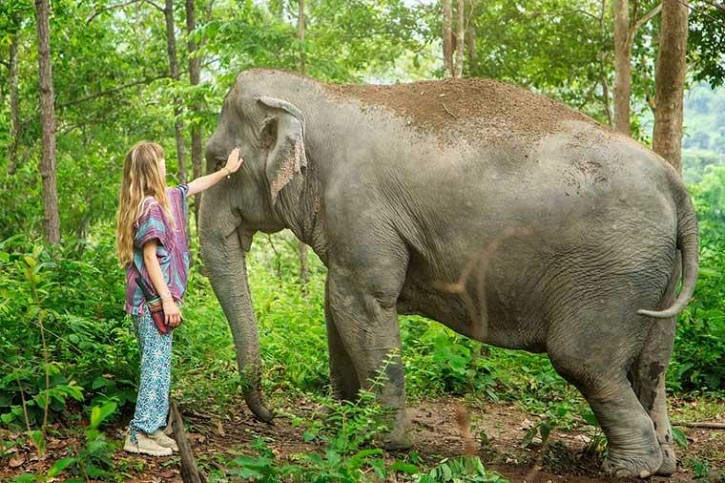 4 Days 3 Nights Honeymoon Package